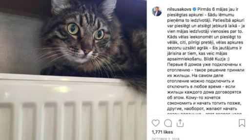 Garsiausi katinai politikoje: nuo miestelio mero JAV iki Rygos savivaldybės keturkojų patarėjų