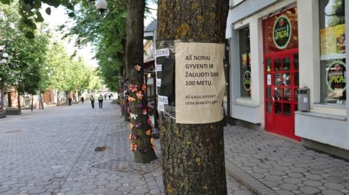 Nežinomybė dėl Šiaulių medžių likimo tęsiasi: atsakingų institucijų prašoma išnagrinėti situaciją