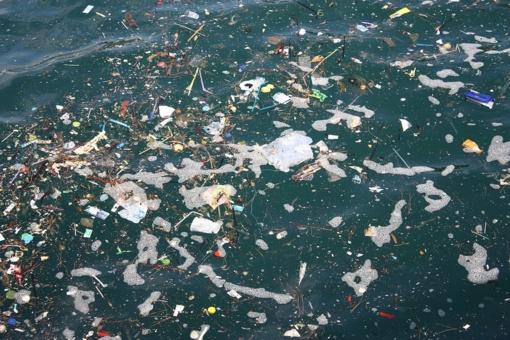 Žmonija privalo išgelbėti vandenynus, kad išsigelbėtų pati, perspėja JT