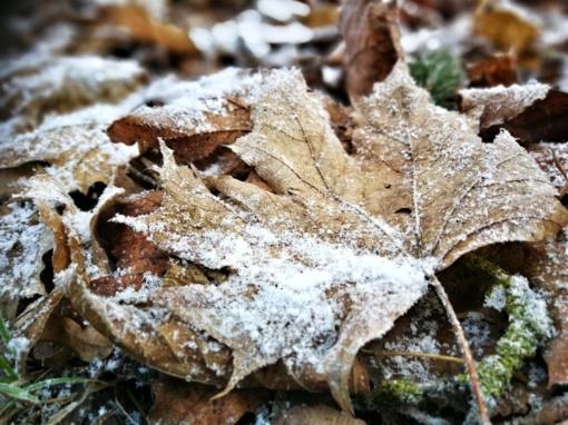 Spalio pradžia Europoje: arktinių orų įsiveržimas, sniegas ir audros