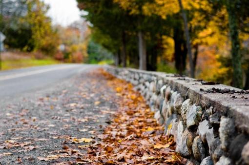 Pavojingos rudeninio vairavimo kombinacijos – nenuvertinkite prikritusių lapų