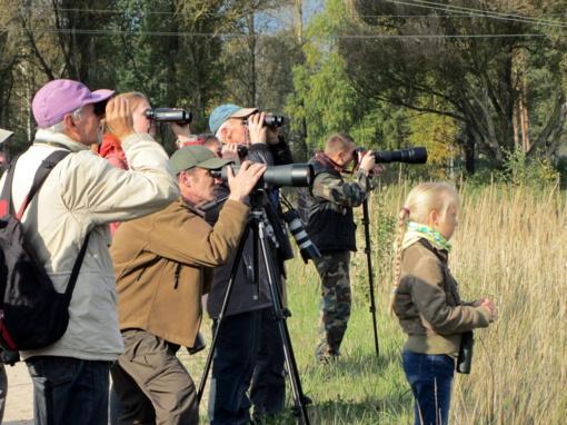 Laukia tradicinės paukščių palydos Kurtuvėnuose