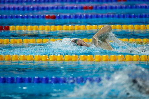 Pasaulio plaukimo taurėje – D. Rapšio pergalė