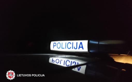 Šalčininkų rajone automobilio nesuvaldė žibintų apakinta moteris