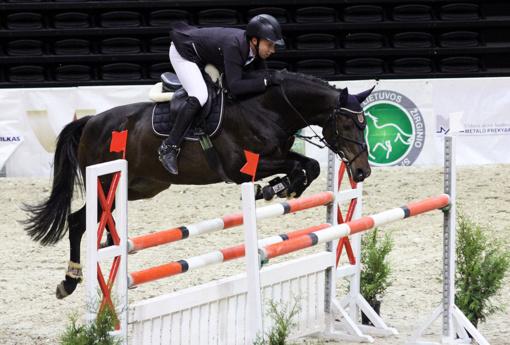 Sekmadienį Šiaulių arenoje žiūrovų dėmesį kaustys įspūdingas reginys – tarptautinės žirgų konkūrų varžybos