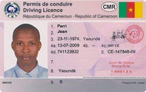 Kamerūnietis įkliuvo su suklastotu savo šalies vairuotojo pažymėjimu