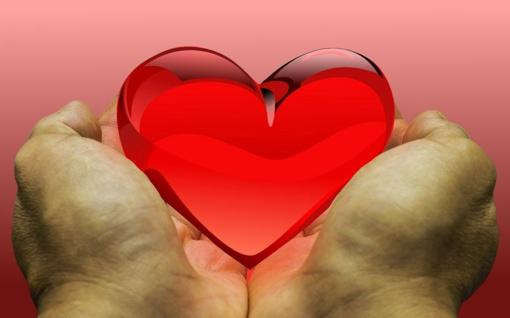 Organų donorystės diena paminėta su daina, su ašara ir su malda