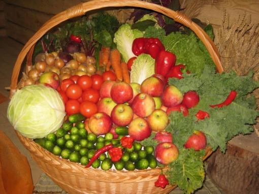 Ant Panevėžio rajono darželinukų stalo atsiras daugiau ekologiško maisto