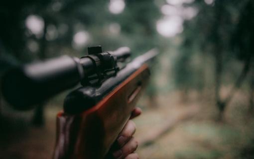 Pusė visų Lietuvoje užfiksuotų medžioklės taisyklių pažeidimų nustatyta Šiaulių regione