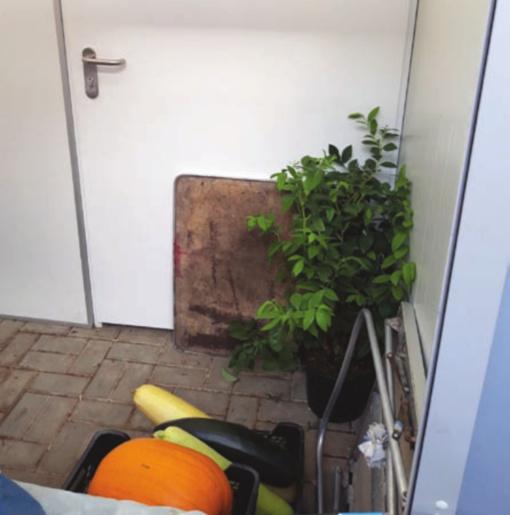 Tualetas įrengtas pagal projektą