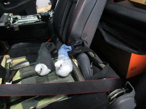 Muitininkai automobilyje aptiko į slaptavietes sukimštų gyvų balandžių kontrabandą