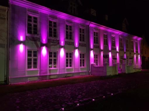 Šilutė nusidažė purpurine spalva ir taip prisijungė prie pasaulinės akcijos