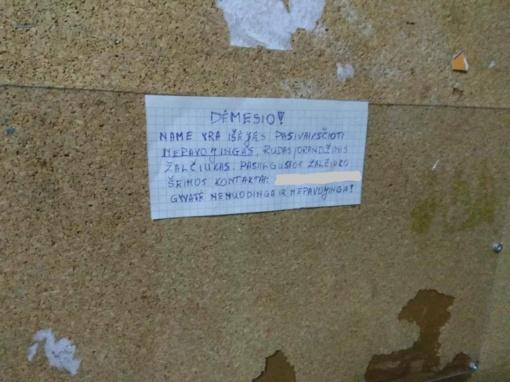 Kauno daugiabučio gyventojai įbauginti: iš vieno buto pabėgo žaltys