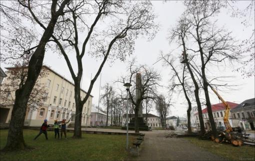 Miesto centre šalinami tik projekto sprendinių įrengimui trukdantys medžiai