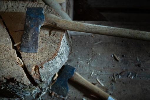 Žiaurumas Panevėžiuko kaime: užmušė šunį, grasino kirviu