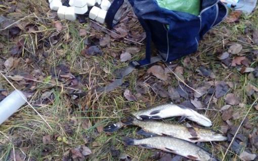 Ignalinos rajone – žvejybos taisyklių pažeidimai