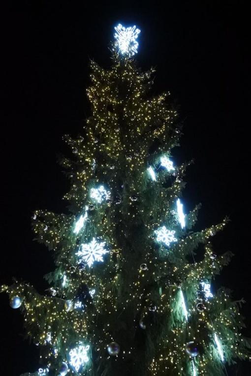 Kalėdinė eglė sužibo ir Visagine