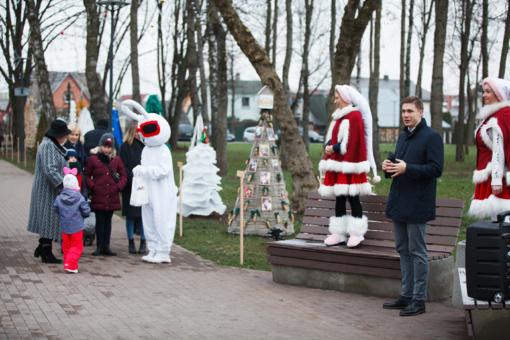 Miesto parke atidarytas unikalus kalėdinių eglučių miestelis