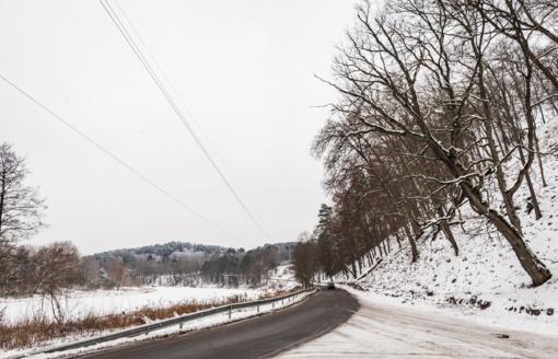 Pagausėjus autoįvykių su laukiniais gyvūnais, aplinkosaugininkai primena važiuoti lėčiau