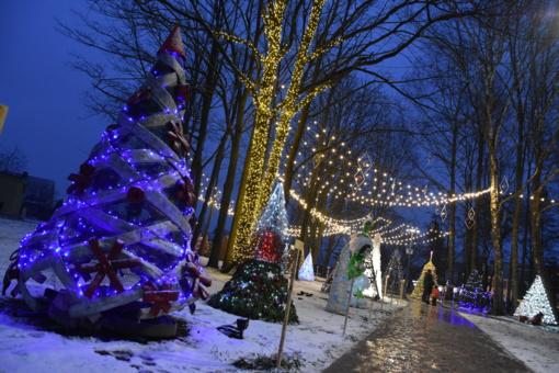 Išrinkite gražiausią kalėdinių eglučių miestelio eglutę!