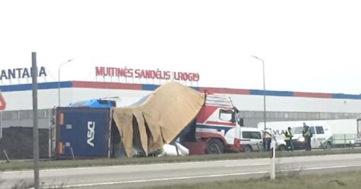 Vilkikas sankryžoje pametė konteinerį