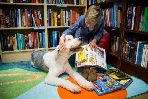 Kauno Vinco Kudirkos viešojoje bibliotekoje prasideda skaitymai su šunimi