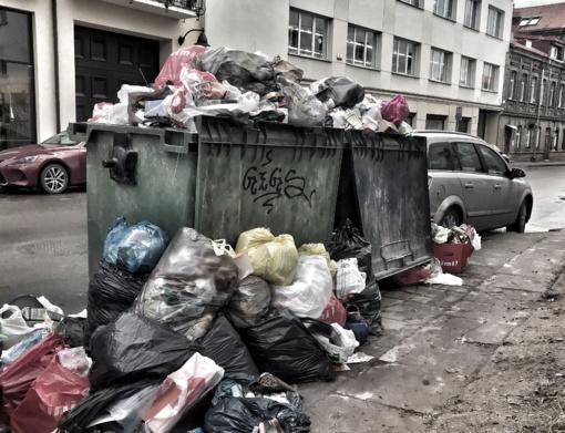 Lietuviams svarbiausias aplinkosaugos klausimas – nesutvarkytos atliekos