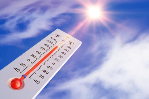 Dalis Europos susiduria su neregėta gruodžio šiluma