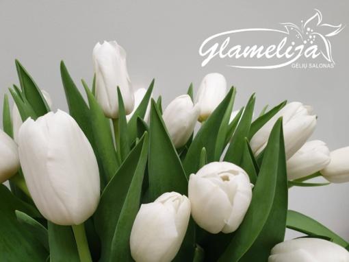 """Gėlių salonas """"Glamelija"""" pradeda tulpių sezoną"""