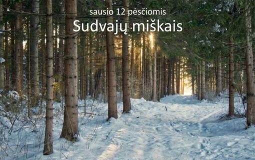 Metus pradėsime žygiu Sudvajų miškais