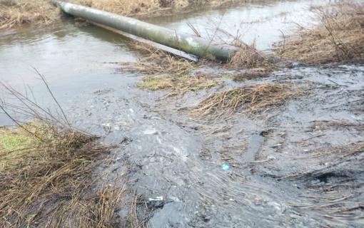 Telšių rajone užsikimšusio kanalizacijos šulinio nuotekos bėgo į upelį