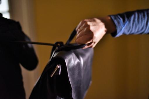 Šalčininkų rajone sumušta ir apiplėšta moteris