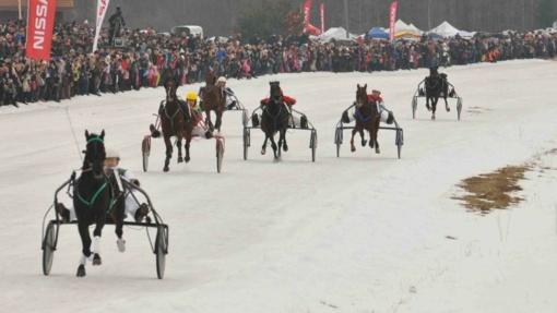 Šilti orai griauna ir tradicijas – atidedamos Sartų žirgų lenktynės