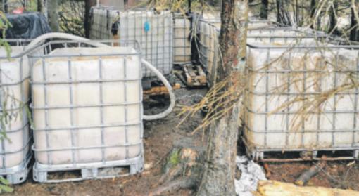 Miško tankmėje – rekordinis kiekis naminės degtinės