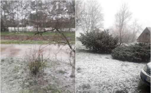 Žiemos išdaigos: šalyje sugriaudėjo perkūnija, prapliupo kruša, sniegas (vaizdo įrašai)
