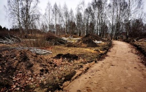 Radviliškio Eibariškių parke darbai juda į priekį