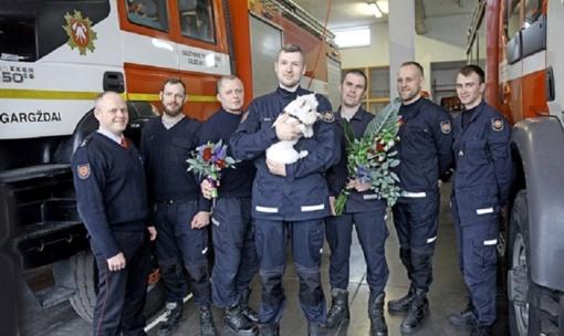 Ugniagesių profesionalumas išgelbėjo ir namus, ir šunytę