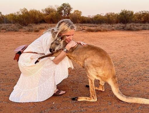 Išgelbėta kengūra  savanoriams dėkoja  šiltais apsikabinimais