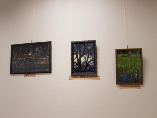 Rimo Lauciaus foto darbų parodos pristatymas
