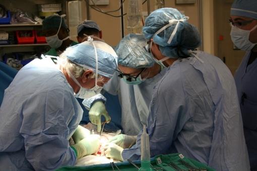 Santaros klinikų medikai per dvi paras atliko šešias organų transplantacijas