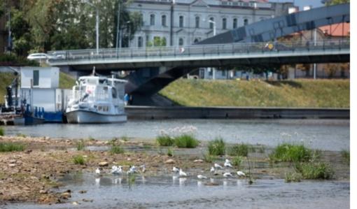 Klimato kaita į Lietuvą gali atginti naujų ligų, perspėja mokslininkai