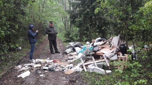 Siūloma griežčiau bausti mišką teršiančius asmenis