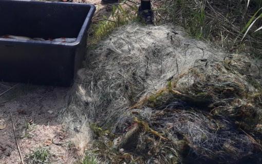 Kelmės rajone sulaikytas statomaisiais tinklais žvejojęs pažeidėjas