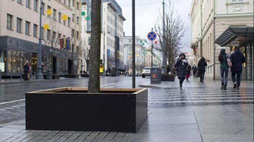 Nepastebėjo klimato kaitos: medžių apsaugai nuo sniego išleido 84 tūkst. eurų
