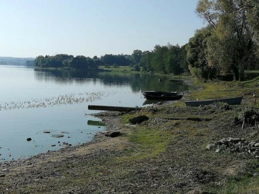 Tarša Vievio ežere: gyventojai skundžiasi smarve, po maudynių ištinka alerginės reakcijos