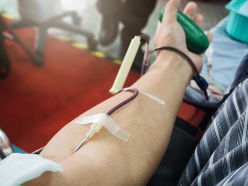 Kraujo donorystės istorija:  kraują skiesdavo pienu, vynu, alumi