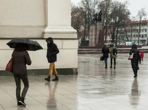 ES klimato kaitos lėšos gali būti kreipiamos į Kauno, Telšių ir Šiaulių regionus