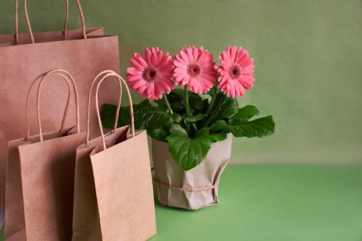 """Nuo antradienio """"Rimi"""" siūlys daugkartinius maišelius iš perdirbtų plastiko butelių"""