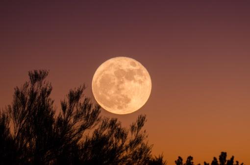 Sužinokite, kaip Mėnulis veikia skirtingus Zodiako ženklus