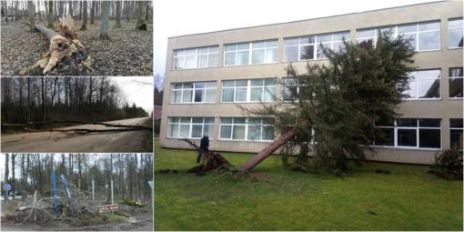 """Ciklonas """"Laura"""" talžė Kėdainius: virto dešimtys medžių, dalis kraštiečių liko be elektros"""
